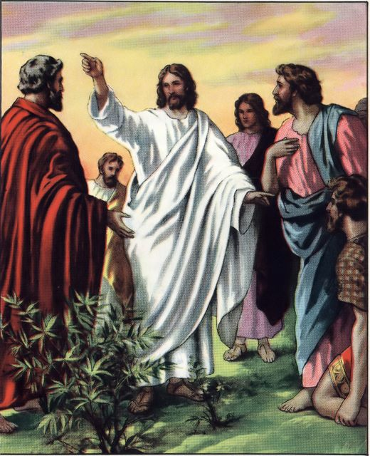 Image result for clipart jesus and disciples